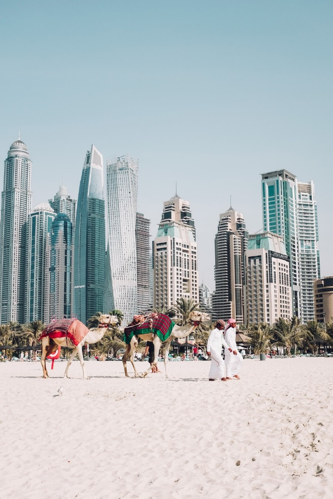 Dubai skyline in front of camels on sand